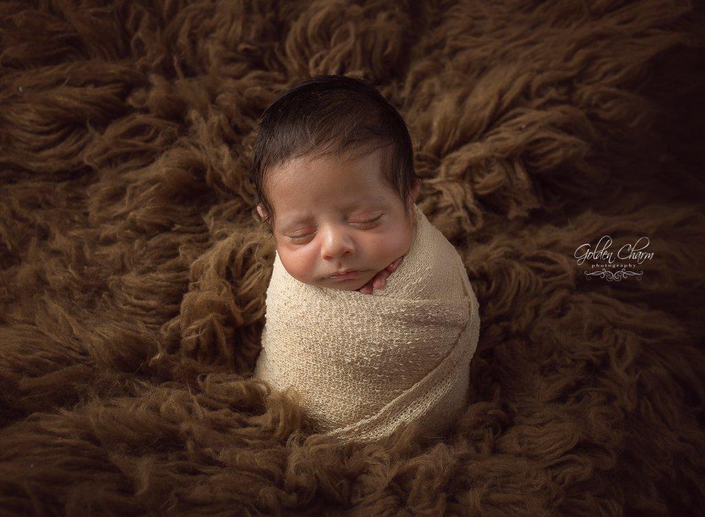buffalo grove newborn photographer